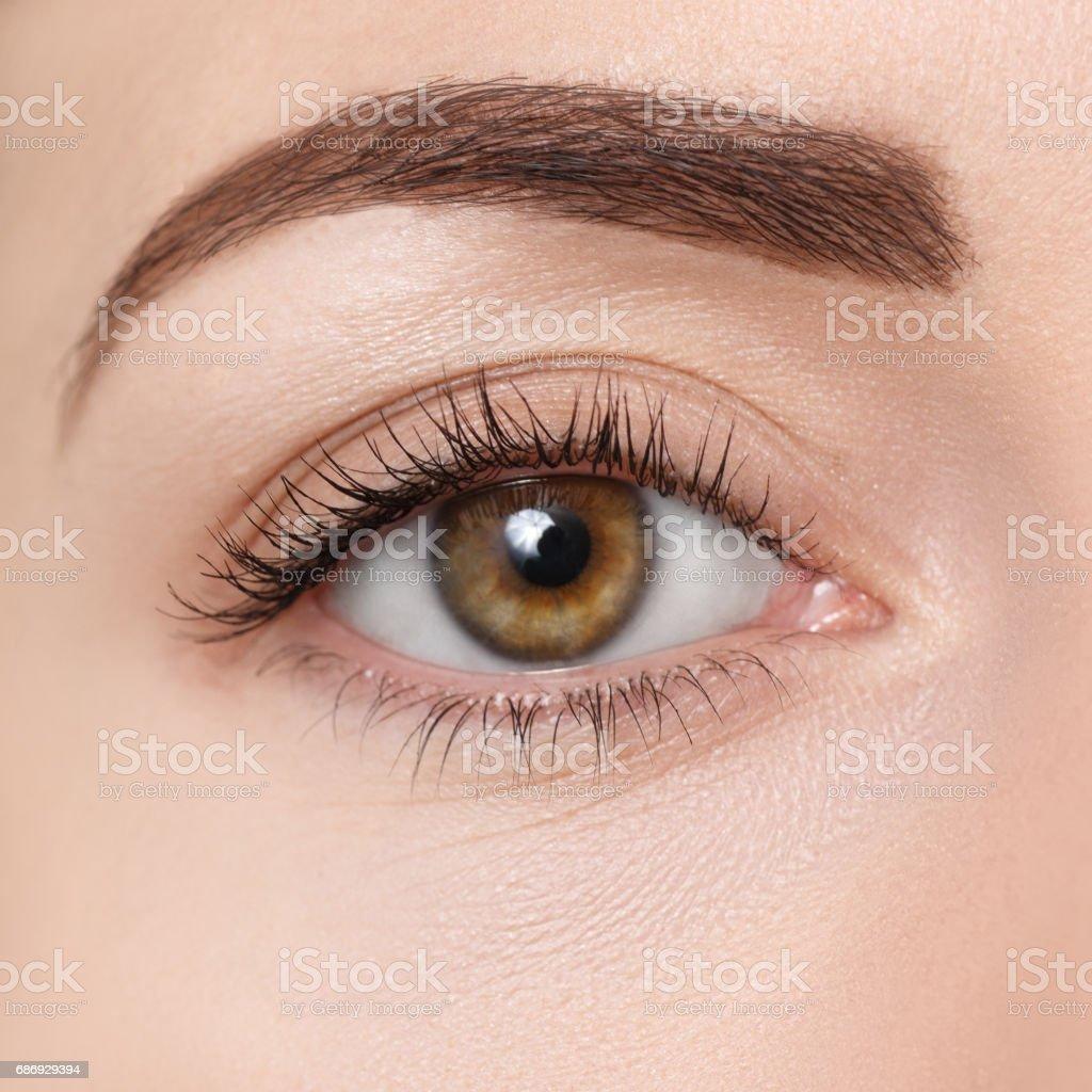 closeup of brown eye stock photo