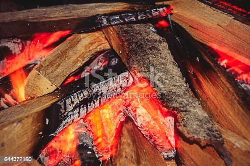 470521655 istock photo Close-up of Burning Campfire 644372160