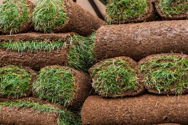 Close up de tapetes da grama do tapete no caminhão com teste padrão verde e marrom em Colorado - foto de acervo