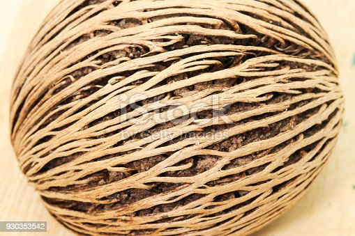 istock Closeup of Cerbera odollam or Pong-pong on wooden 930353542