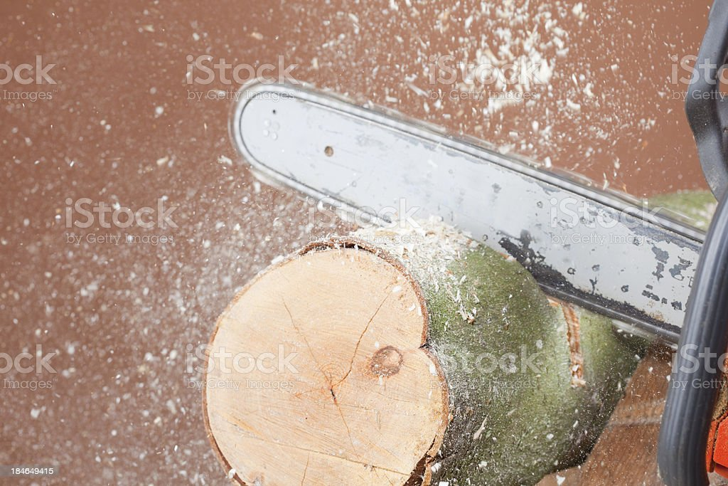 Closeup Of Chainsawing A Log royalty-free stock photo