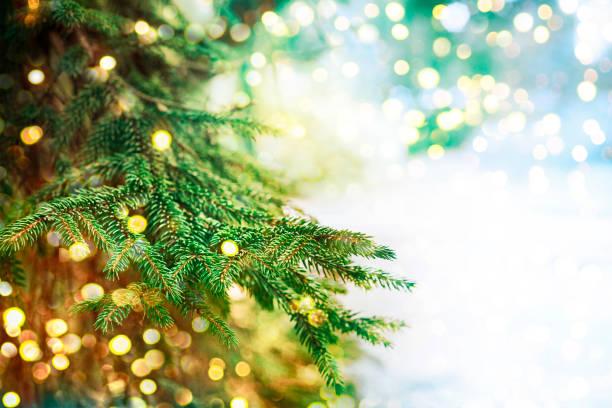 closeup of christmas-tree - christmas lights imagens e fotografias de stock