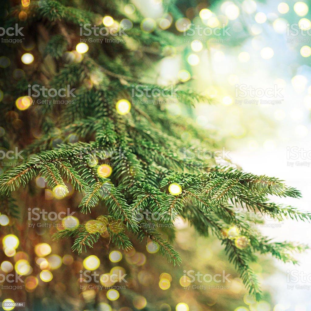 Detalhe-árvore de Natal - foto de acervo