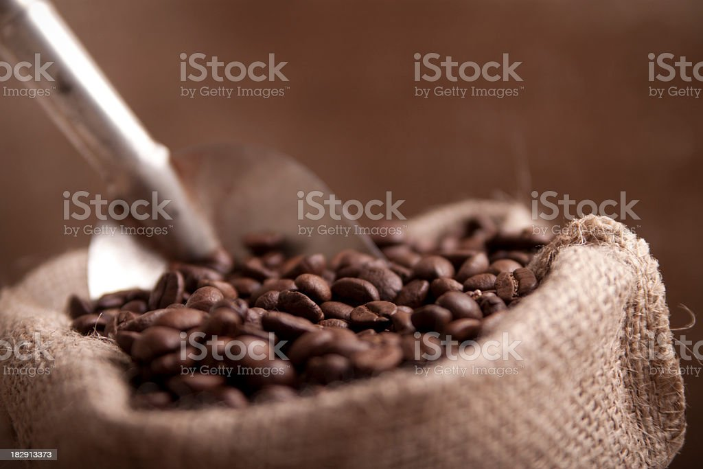 Close-up of coffee beans in a brown sack with metal scoop royalty-free stock photo