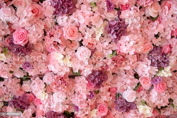 Photo of close-up of colorful roses backdrop wall.
