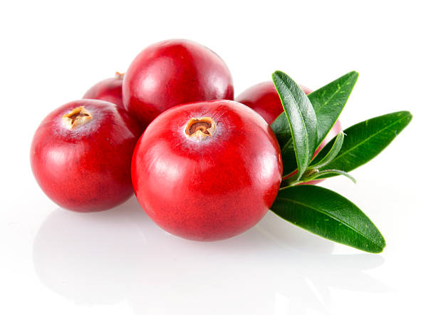 close-up of cranberries and leaves - cranberry stock photos and pictures