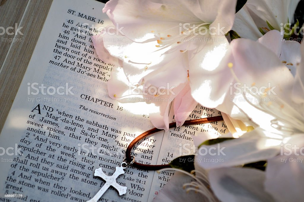 Closeup of cross, azaleas, and ressurection chapter in Bible stock photo