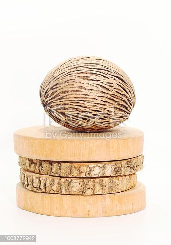 istock Closeup of  dry Cerbera oddloam's seed on round teak wood on white background 1008772942