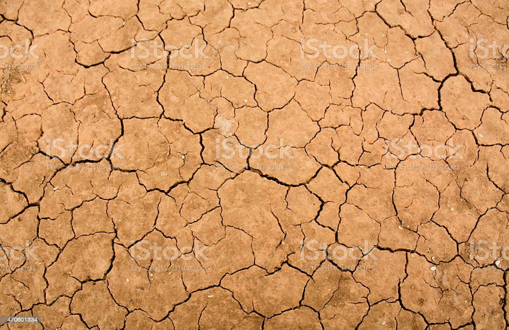 Close-up of dry cracks in the desert stock photo