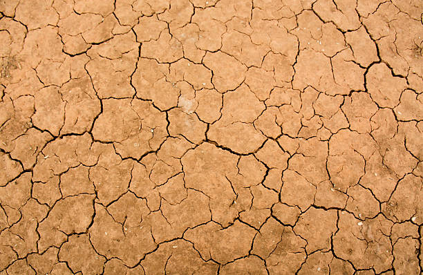 Close-up of dry cracks in the desert