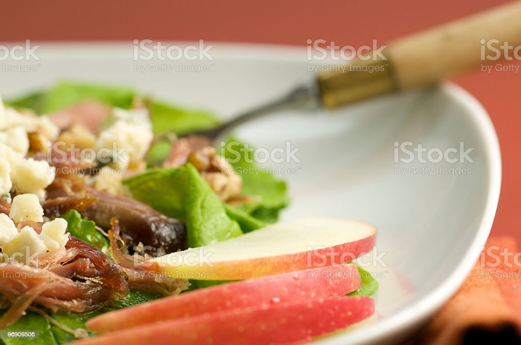 Close-up of Duck Confit Salad with Apple Slices royalty-free stock photo