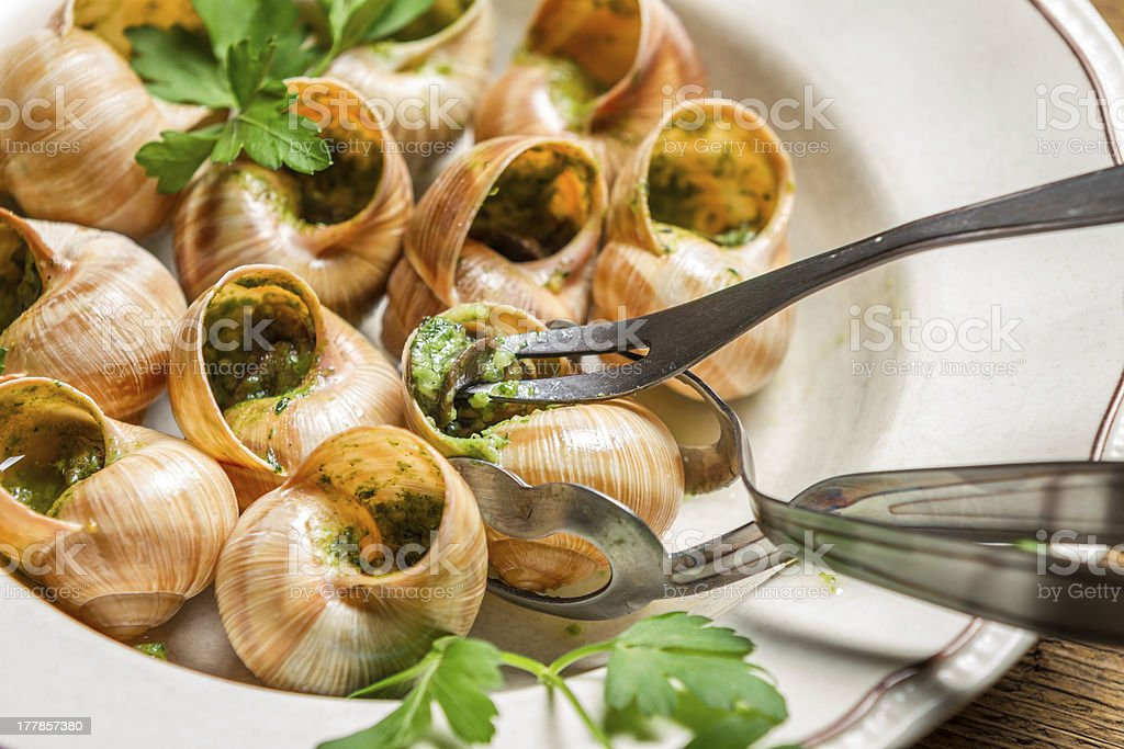 Closeup of eating the fried snails with garlic butter royalty-free stock photo