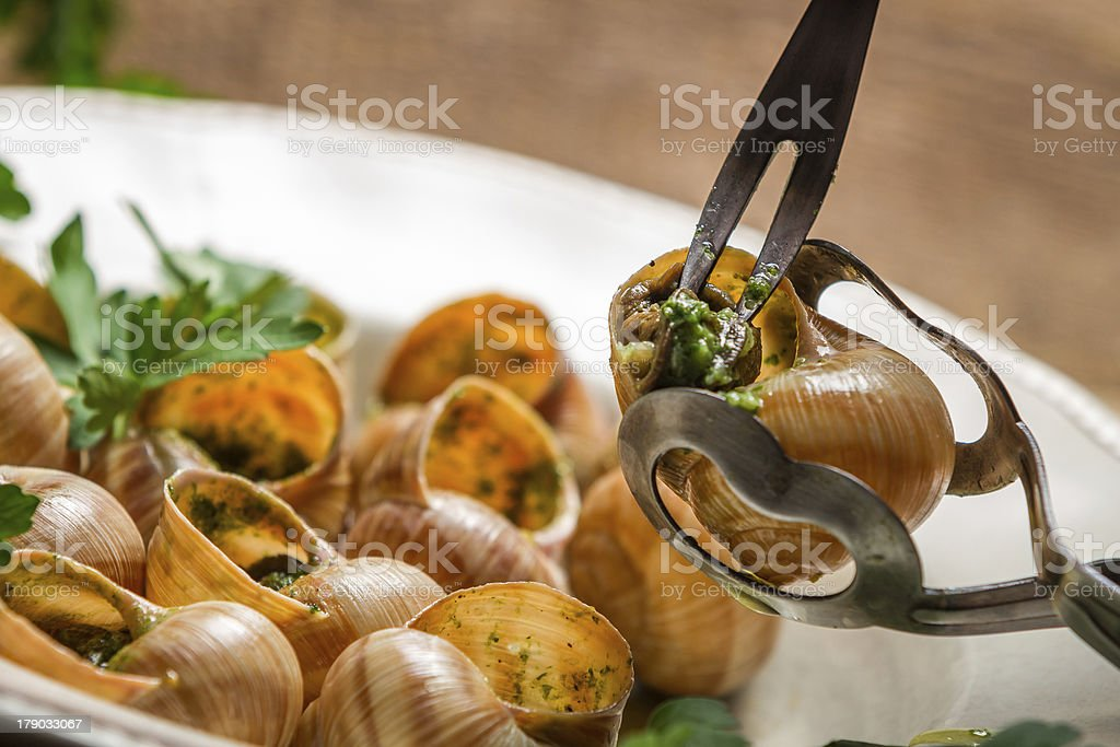 Closeup of eating the fried snails with garlic butter stock photo
