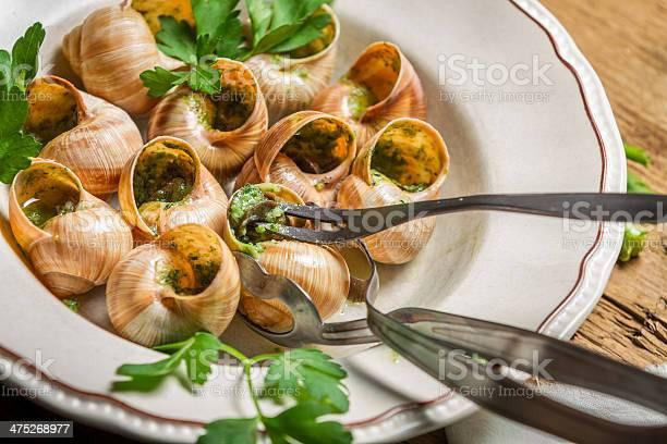 Closeup of eating the fried snails with garlic butter picture id475268977?b=1&k=6&m=475268977&s=612x612&h=lsjmtwxbenjwhrz1bzom4vdwfmsrpxcanefsatx0yaa=