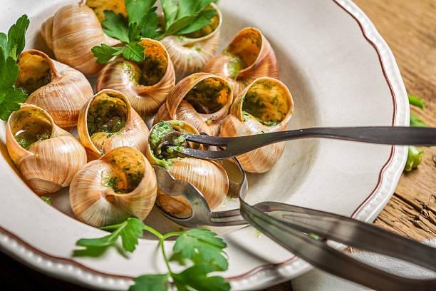 zbliżenie jedzenia smażonych ślimaki z czosnku masła - ślimak gastropoda zdjęcia i obrazy z banku zdjęć