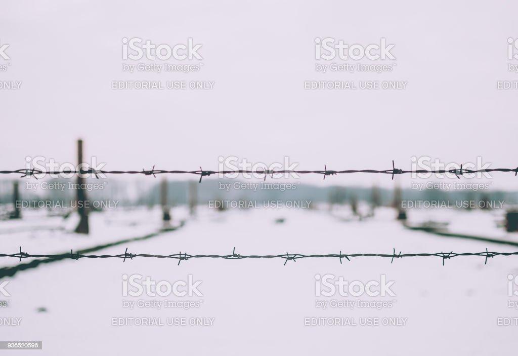 Nahaufnahme der elektrifizierten Stacheldrahtzaun des KZ Auschwitz-Birkenau. – Foto