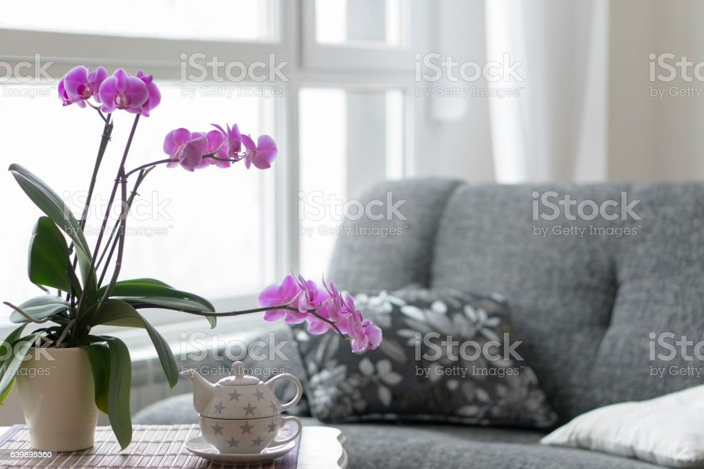Close-up of empty living room stock photo
