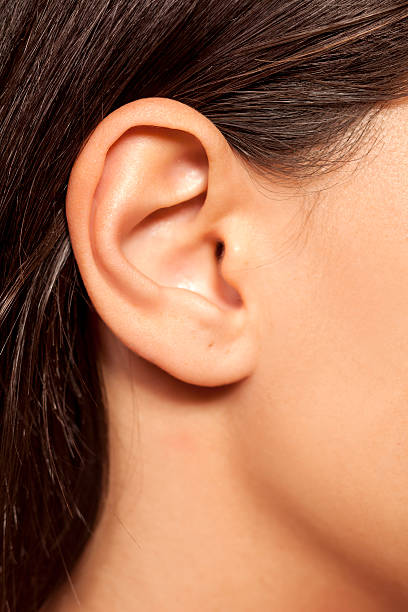 close-up of female ear - ear stock photos and pictures