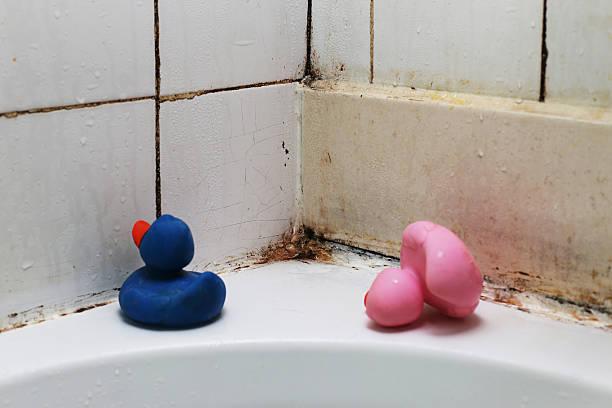 badezimmer fliesen und schimmel - farbe gegen schimmel stock-fotos und bilder