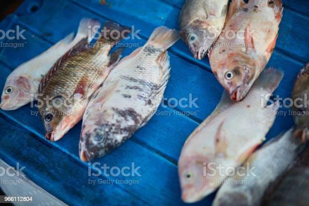 Крупным Планом Рыбы Для Продажи На Рынке — стоковые фотографии и другие картинки Без людей
