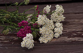 Closeup of flower achillea millefolium, commonly known as yarrow or common yarrow on rustic weathered wooden boards. Medicinal plant, empty space for your text.