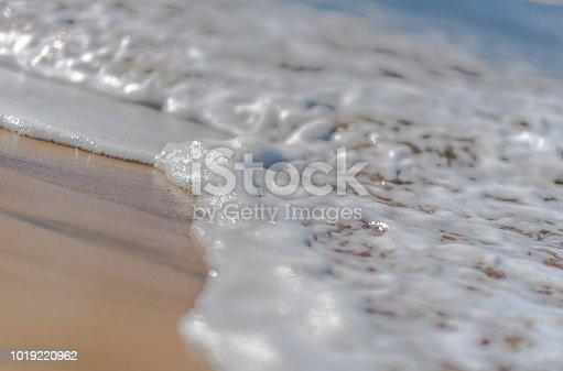 istock Close-up of Foamy Beach Wave 1019220962