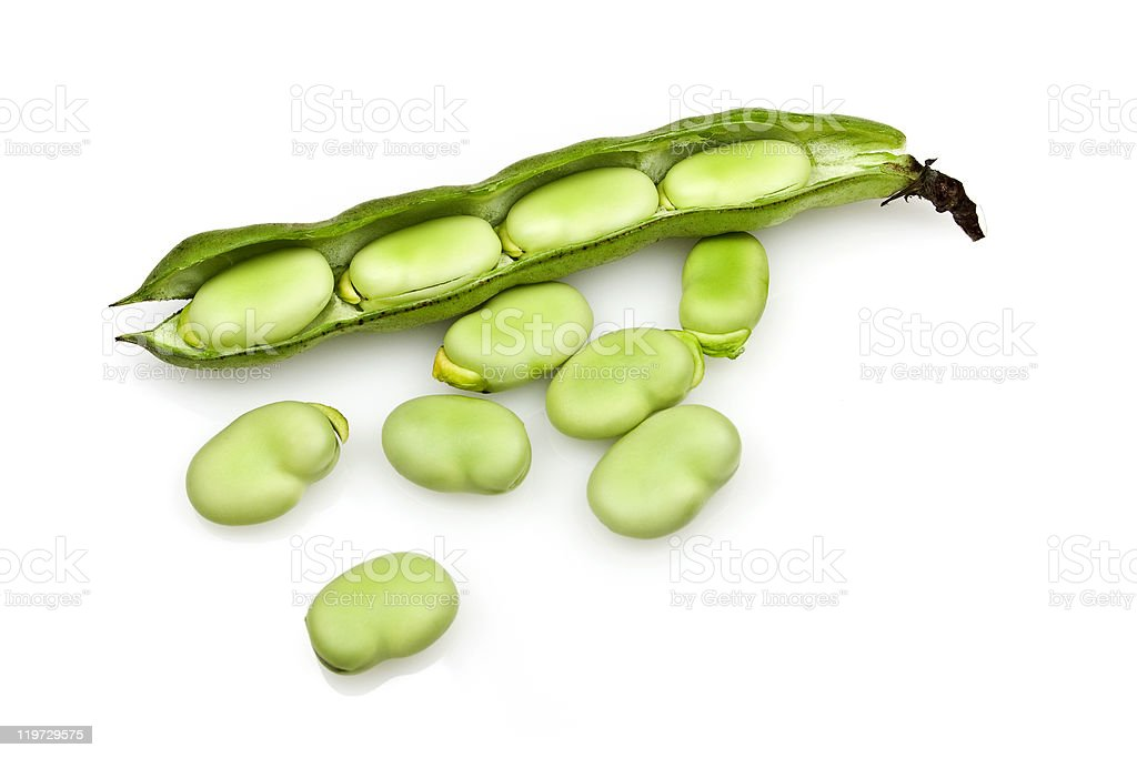 Close-up of fresh broad beans isolated on white stock photo