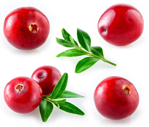 close-up of fresh cranberries with leaves - cranberry stock photos and pictures