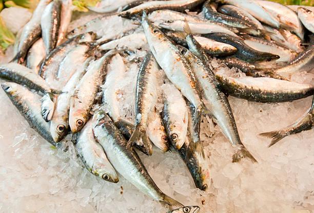 Gros plan de poisson frais sur la glace au marché - Photo