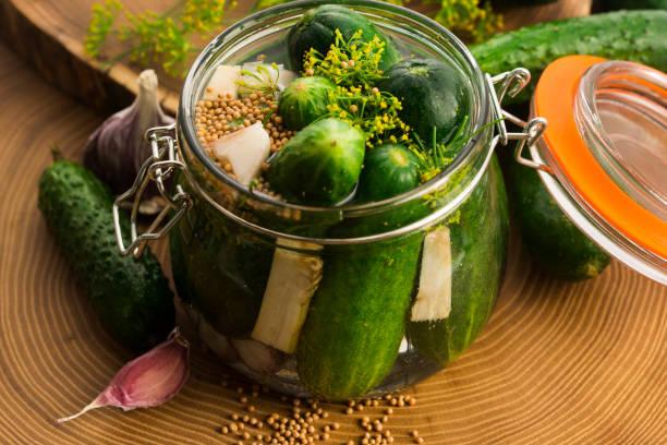 Closeup of fresh pickling cucumbers stock photo