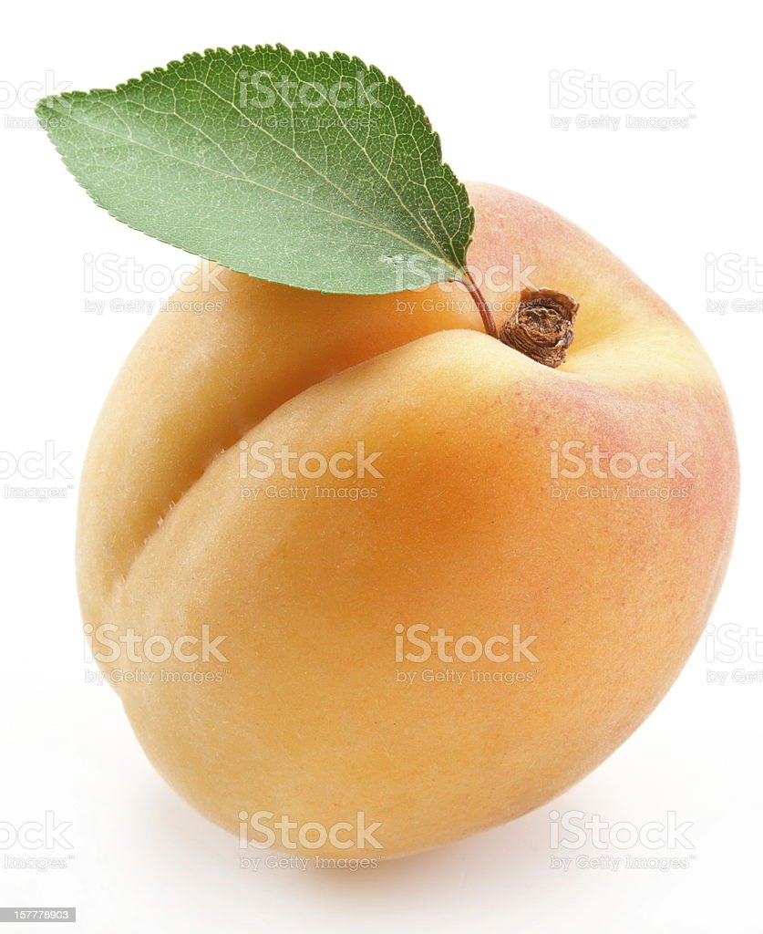 Close-up of freshly picked ripe apricot with stem and leaf stock photo