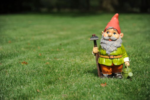 Gnome Photographed on grass in garden, Gnome offset to give space to left for copy