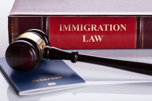 Close-up Of Gavel And Passport Close-up Of Gavel And Passport In Front Of Law Book deportation stock pictures, royalty-free photos & images