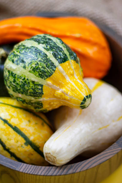 Close-up of Gourds in a Bowl