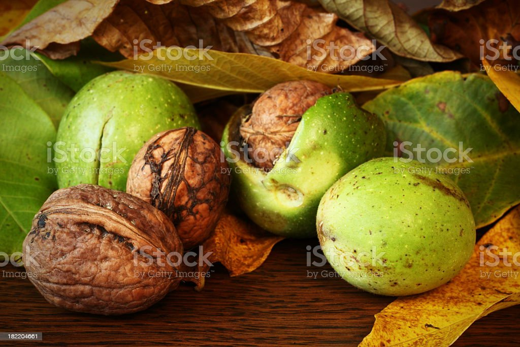 Close-up of green and brown walnuts on wooden table stock photo