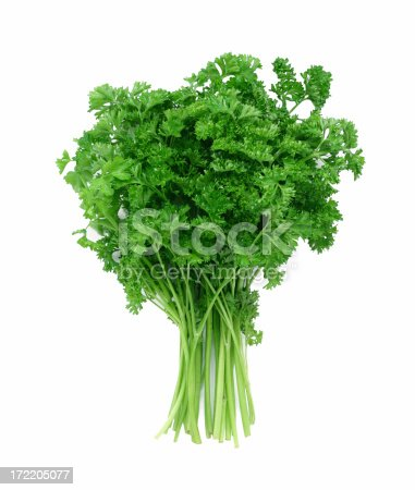 A bunch of fresh curly parsley. Isolated on white.
