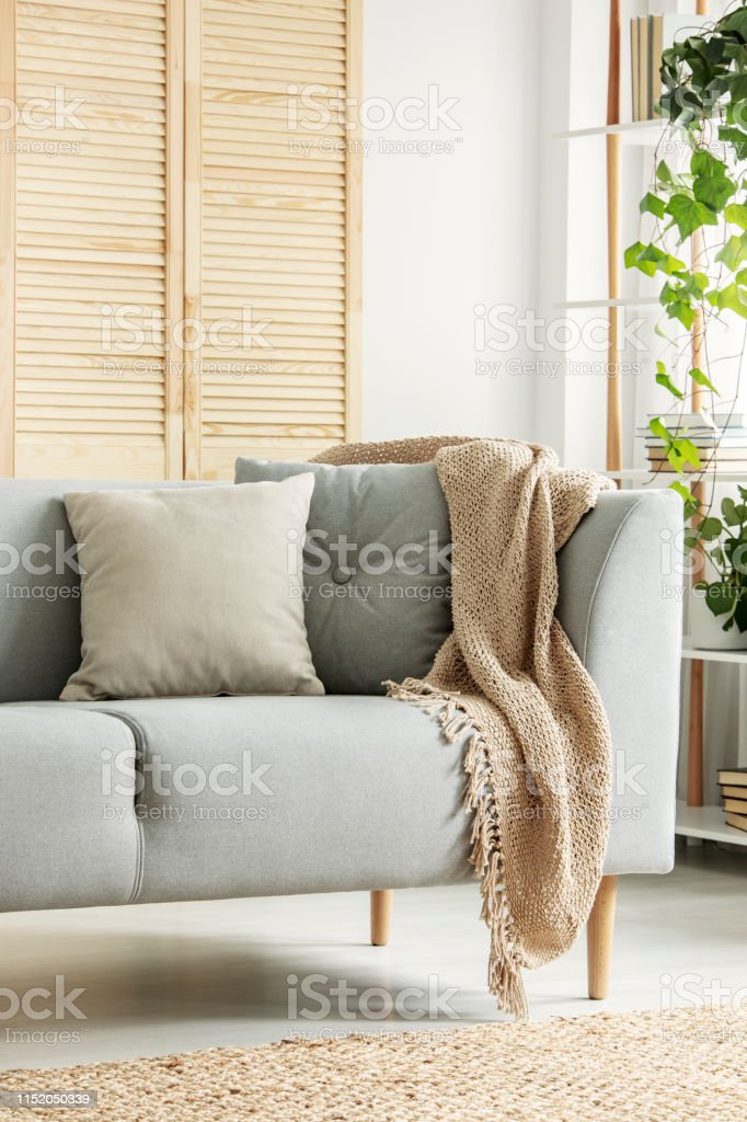 Closeup Of Grey Sofa In Modern Living Room Stock Photo Download Image Now Istock