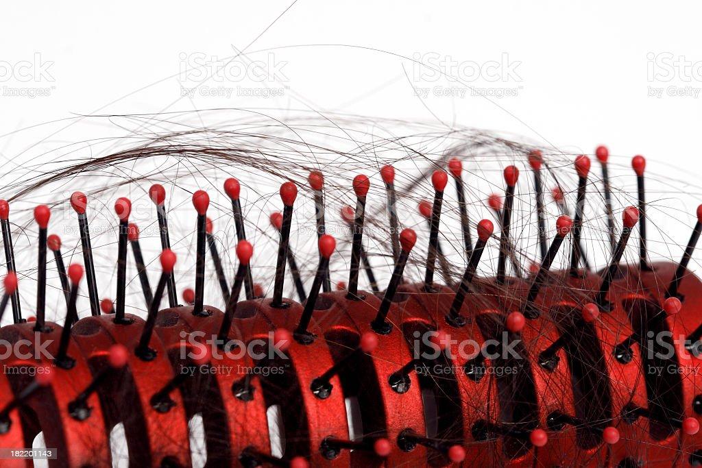 Closeup of Hairbrush with Hair Loss royalty-free stock photo