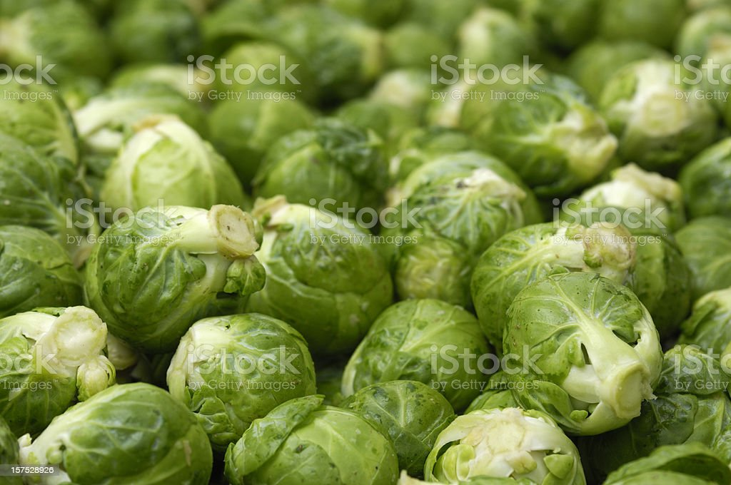 Close-up of Harvested Brussels Sprouts royalty-free stock photo