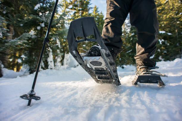 gros plan du randonneur, randonnées en raquettes sur le sentier qui traverse la forêt de l'hiver, canada - raquette photos et images de collection