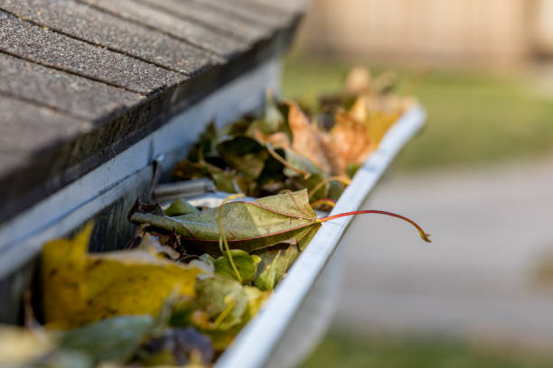Closeup of house rain gutter clogged with colorful leaves falling from trees in fall. Concept of home maintenace and repair stock photo