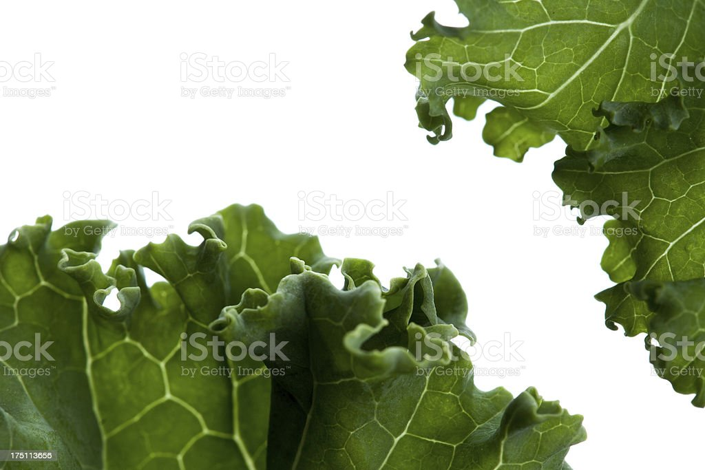 closeup of kale leafs on white background royalty-free stock photo