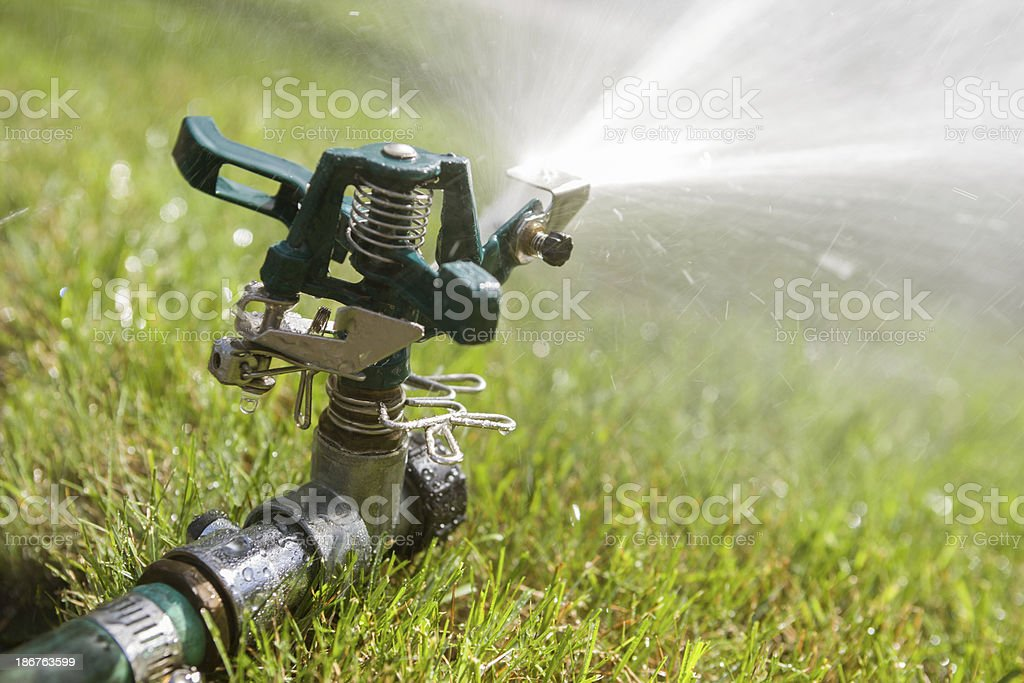 Close-up of lawn sprinkler royalty-free stock photo