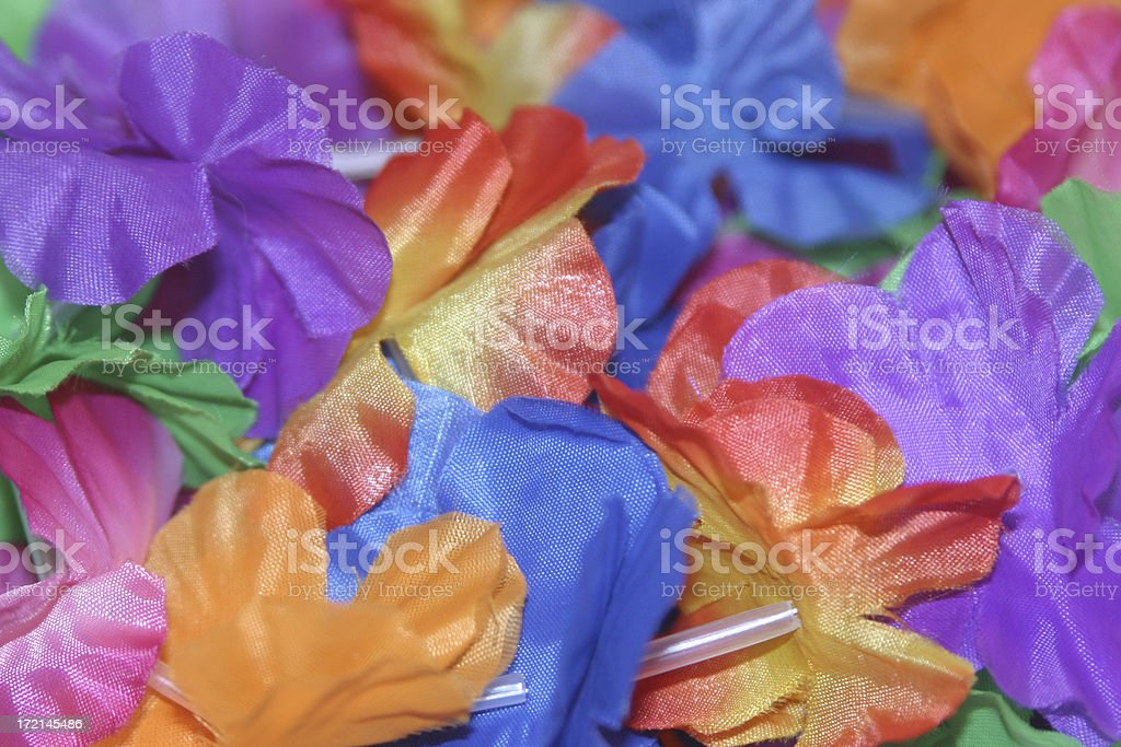 Closeup of lei flowers royalty-free stock photo