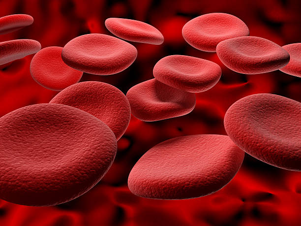 Close-up of magnified red blood cells Red Blood cells cruising down a vein. red blood cell stock pictures, royalty-free photos & images