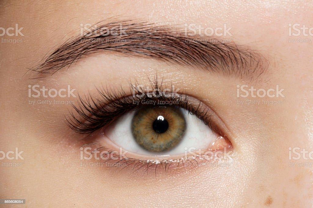 Closeup Makeup Grüne Augen Mit Langen Wimpern Und Augenbrauen Braun