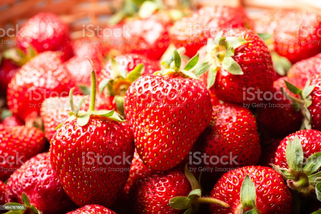 Closeup of many fresh strawberries royalty-free stock photo