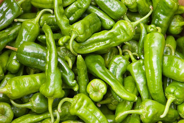 A closeup of many green hot chili peppers stock photo