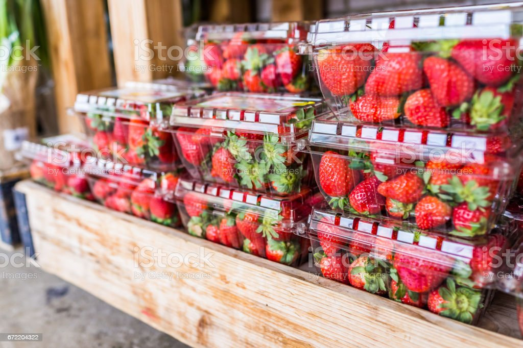 Closeup of many strawberries in plastic boxes on display in wooden crate stock photo
