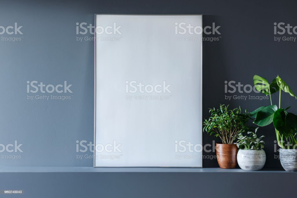 Close-up of mockup of white empty poster next to plants in grey room interior stock photo